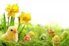 Lets Celebrate Easter
